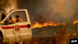 تاکنون بیش از ۱۱۷ هزار هکتار گرفتار آتش شده است.