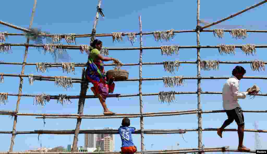 People dry fish on bamboo poles in Mumbai, India.