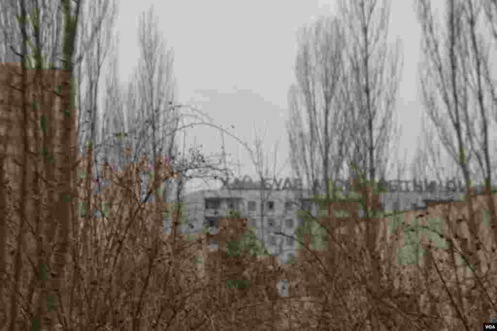 A natureza tomou o lugar da maior parte das vilas dentro das zonas de exclusão, em Pripyat, Ucrânia, Março 19, 2014. (Steve Herman/VOA)