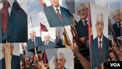 Rakyat Palestina di kota Ramallah, Tepi Barat menyambut kedatangan Presiden Mahmoud Abbas (25/9). Presiden Abbas dielu-elukan sebagai pahlawan di Palestina, setelah memberikan pidato di sidang umum PBB memohon pengakuan Palestina sebagai negara merdeka.