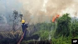 Kebakaran hutan di Pekanbaru, Riau (Foto: dok).