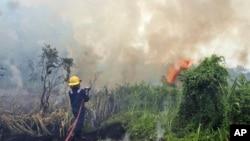 Seorang petugas pemadam kebakaran berupaya memadamkan api kebakaran hutan di Pekanbaru, provinsi Riau, 27 Februari 2014 (Foto: dok).
