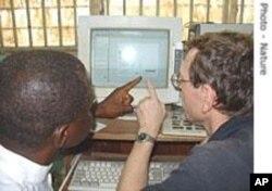 Des experts examinant les données sur la grippe aviaire au Nigeria