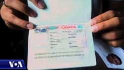 支持香港人民:加拿大為港人申請楓葉卡開通兩項新途徑