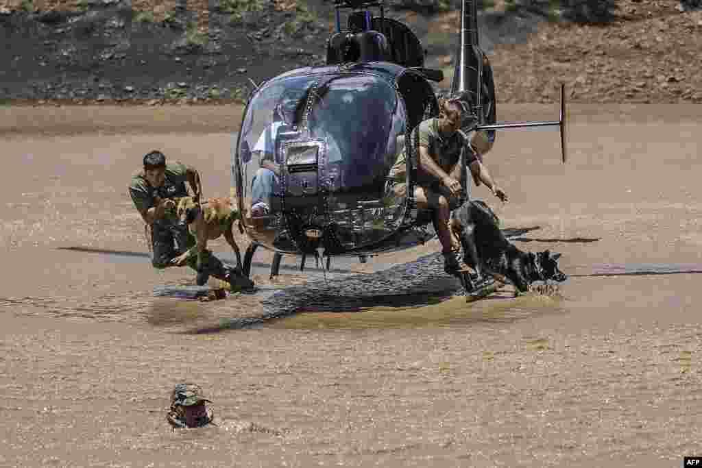 Pasukan keamanan Afrika melakukan latihan untuk menangkap pemburu liar badak di Magaliesberg, Afrika Selatan.