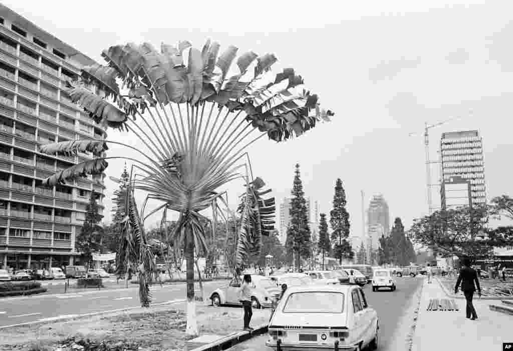 រូបឯកសារ៖ រូបភាពបង្ហាញពីដងផ្លូវនៅទីប្រជុំជនក្រុង Kinshasa សាធារណរដ្ឋ Zaire (ឥឡូវនេះសាធារណរដ្ឋប្រជាធិបតេយ្យកុងហ្គោ) មុនពេលការប្រកួតដណ្តើមខ្សែក្រវ៉ាត់រវាងលោក Muhammad Ali និងលោក George Foreman នៅក្នុងឆ្នាំ១៩៧៤។