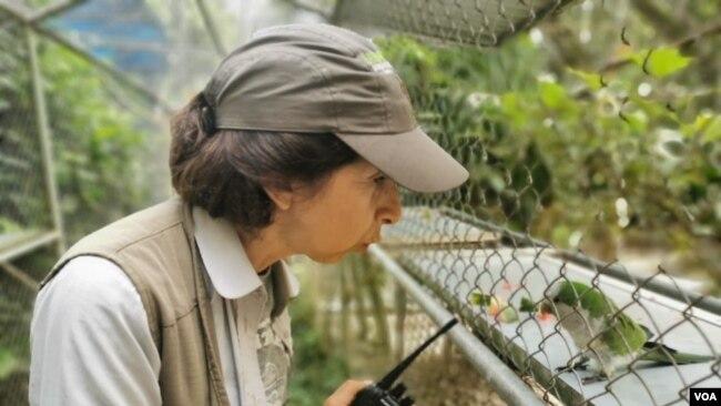 Vicky Ossio cuida a cientos de animales en el refugio de Senda Verde, Bolivia.
