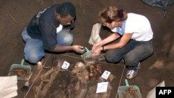 Верховный суд Зимбабве остановил раскопки массового захоронения