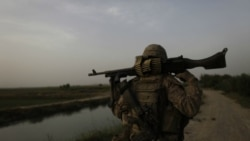 رهبر ارشد حقانی در افغانستان بازداشت شد