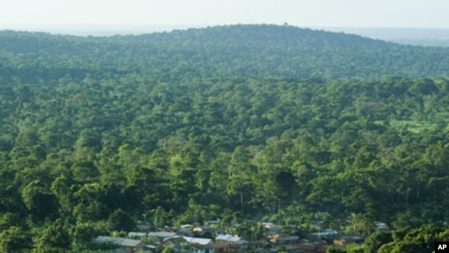 An aerial view of a settlement in Mabira Forest Reserve, 55km (34 miles) east of the capital Kampala, April 21, 2007.