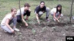Ko su bolji saptaci biljkama od ovih djevojcica?