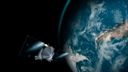 Quiz - Study: Mouse Sperm Stored in Space Produces Baby Mice on Earth