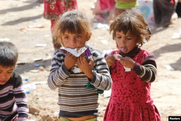 이라크의 이슬람 수니파 무장세력 ISIL 점령지인 하위자에서 탈출한 수니파 어린이들이 남서부 마을 키르쿠크에 도착했다.