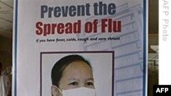 Anh báo cáo 10 ca tử vong vì cúm heo trong 6 tuần qua