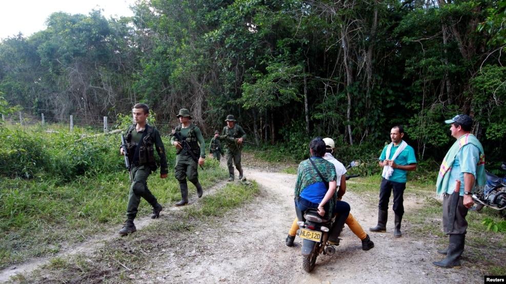 Tropas colombianas realizan ejercicios de entrenamiento para proteger a los equipos de militares y civiles que realizarán la erradicación manual de las plantas.