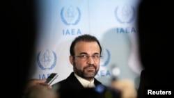 國際原子能機構的伊朗代表納加菲