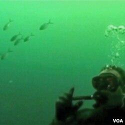 ... a veliko je pitanje koliko čovjek može pomoći očuvanju podmorskog eko-sistema?
