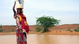 A woman gets water from a pool infected with cholera in Gounfara, Niger, despite warnings from medical services, August 29, 2005.