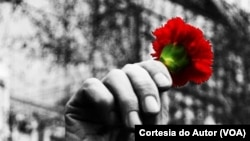 Revolução dos Cravos, Portugal