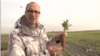 Dutch Experiment Grows Vegetables in Sea Water