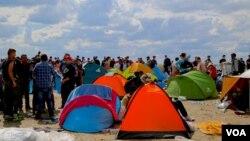 Người tị nạn tập trung ở biên giới Serbia và Hungary.