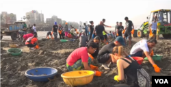 Indian citizens and Bolywood actors help clean waste off of Versova beach by Mumbai.