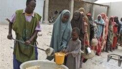 سازمان ملل متحد در مورد شیوع وبا در سومالی هشدار داد