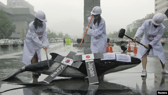 Environmental activists demonstrate with a mock whale, during a protest against the plans of the South Korean government to resume hunting whales for research purpose, in central Seoul, July 6, 2012.
