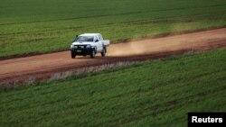 Môt nông gia đi thăm cánh đồng lúa mì của mình ở Condobolin cách Sydney khoảng 489 km