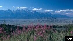 Grand Titon në Uajoming, një pejsazh mahnitës, me male magjepsëse dhe faunë tejet të pasur