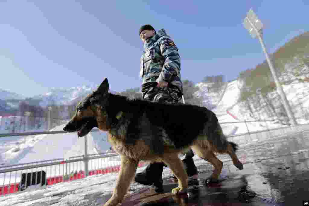 A Russian security forces K-9 officer patrols with his dog near the finish area of the Alpine ski course ahead of the 2014 Sochi Winter Olympics, Feb. 4, 2014.