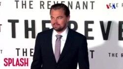 Leonardo Dikaprio ətraf mühitin qorunmasına 20 milyon dollar ianə edib