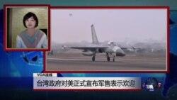 VOA连线:台湾政府对美正式宣布军售表示欢迎