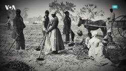 День национальной независимости: новый праздник в честь освобождения рабов 156 лет назад
