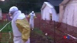 2014-11-16 美國之音視頻新聞: 剛果宣布消除伊波拉疫情