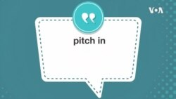 学个词 ---pitch in
