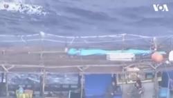Tàu cá Triều Tiên dạt vào biển Nhật Bản