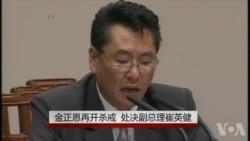 金正恩再开杀戒 处决副总理崔英健