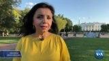Amerika Manzaralari: Afg'onlar, Guantanamo, Dushanbe choyxonasi