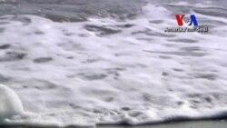 Temiz Enerjide Yeni Alternatif: Okyanuslar