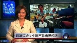 VOA连线(刘芍佳):欧洲议会:中国不是市场经济