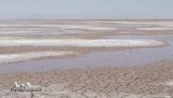Экологи возвращают к жизни мертвую дельту реки Колорадо
