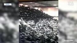 Batı Şeria'daki Sinagogda Platform Çöktü: 2 Ölü 150 Yaralı