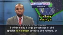 Habitat Loss Endangers Majority of Migrating Birds