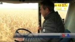 Міжнародний валютний фонд очікує від України якнайшвидшого відкриття ринку землі. Відео