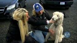 Чоловік викрав авто подружньої пари разом із їхньою улюбленою собакою. Відео