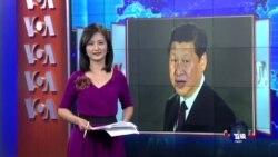 VOA连线:台外交部成立专案小组 观察习近平访美