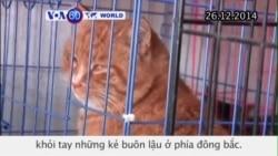 1.000 chú mèo ở TQ được cứu khỏi tay những kẻ buôn lậu (VOA60)