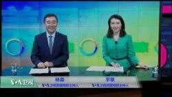 VOA卫视(2016年10月1日 美国观察)