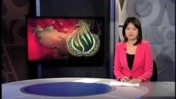 再有中国维权律师被传唤 或与宣传公民权利有关